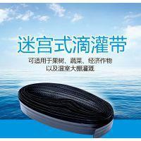 山东省菏泽市鄄城县迷宫式滴灌带