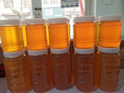 山东省枣庄市市中区百花蜜 玻璃瓶装 1年 98%