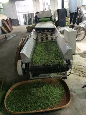 安徽省安庆市潜山县高山绿茶 二级 袋装