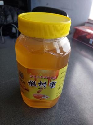 黑龙江省伊春市金山屯区土蜂蜜 塑料瓶装 2年以上 100%