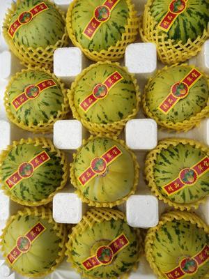 辽宁省锦州市北镇市脆皮香瓜 1斤以上