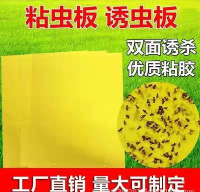 山东省聊城市东昌府区诱虫板