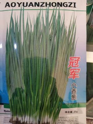 山东省潍坊市安丘市日本钢葱种子 ≥95% 杂交种