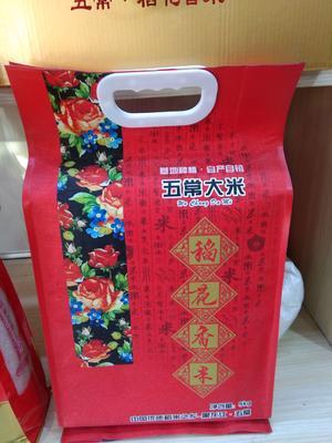 黑龙江省哈尔滨市五常市 稻花香大米 一等品 晚稻 粳米