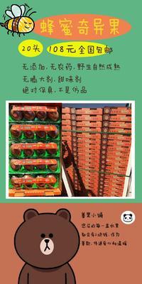 北京丰台区野生猕猴桃  100~120克 蜜蜂奇异果保真 包邮