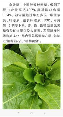 北京大兴区蔬菜大棚  按每棵来计算