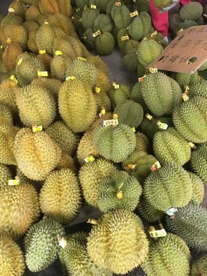广西壮族自治区南宁市江南区泰国榴莲 2公斤 80 - 90%以上