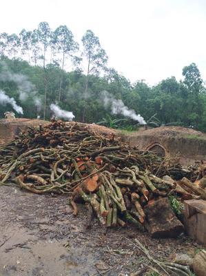 广东省茂名市高州市果木木炭  一级45斤/袋优质炭