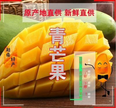 广西壮族自治区南宁市上林县大青芒 2两以上