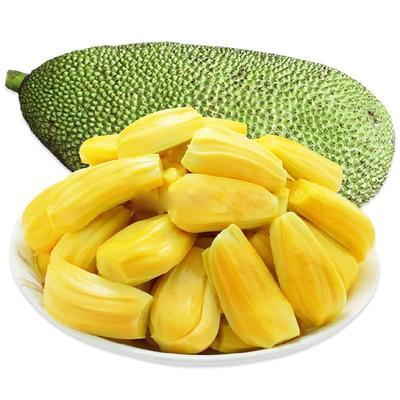 海南省儋州市儋州市海南菠萝蜜 10-15斤