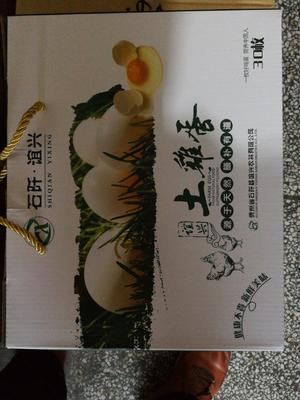 湖南省怀化市鹤城区土鸡蛋 食用 礼盒装