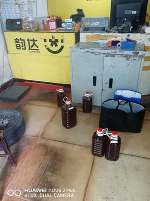 湖南省怀化市会同县现榨山茶油