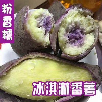 广东省潮州市湘桥区冰淇淋红薯 3两~6两 紫皮