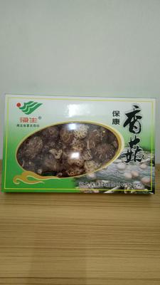 湖北省襄阳市宜城市野香菇干 袋装 1年以上