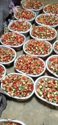江苏省苏州市虎丘区宁玉草莓 20克以上