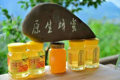 这是一张关于土蜂蜜 塑料瓶装 2年 95%以上 的产品图片