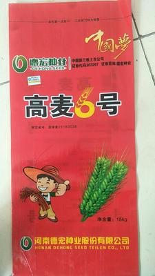 河南省新乡市新乡县小麦种子  亲本 ≥95% ≥95% ≥85% ≤13% 高麦6号