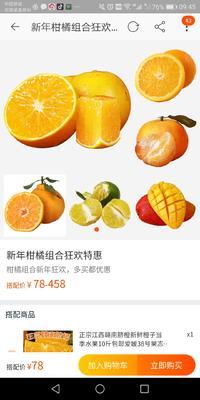 这是一张关于冰糖脐橙 85-90mm 4-8两 的产品图片