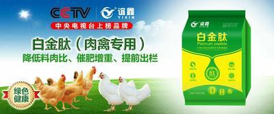 这是一张关于禽畜饲料  促生长 提前出栏的产品图片