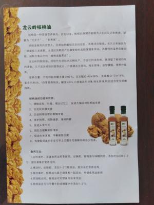 这是一张关于原生态核桃油 的产品图片