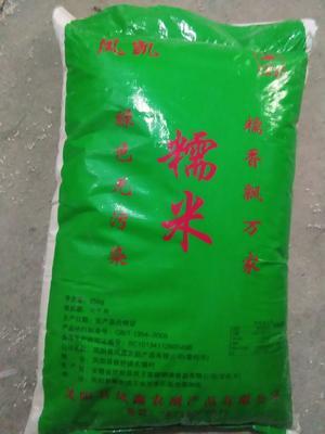 这是一张关于圆糯米 的产品图片