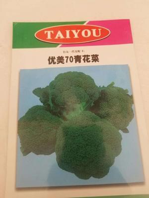 这是一张关于西兰花种子 的产品图片