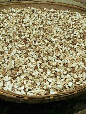 这是一张关于茯苓  云南松茯苓的产品图片