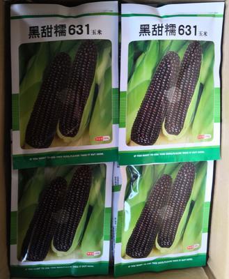 这是一张关于甜糯玉米种子 三交种 ≥90% 的产品图片