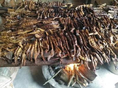 广西壮族自治区来宾市金秀瑶族自治县烟笋干 散装 1年以上