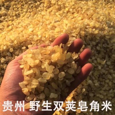 贵州省毕节市织金县无硫皂角米