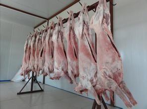 内蒙古自治区锡林郭勒盟西乌珠穆沁旗羊肉类 生肉