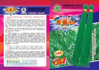 河南省郑州市二七区长青豆角种子 ≥99%