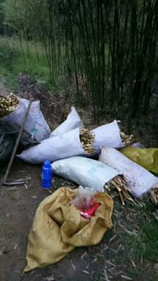 江苏省苏州市常熟市春笋干 袋装 1年以上