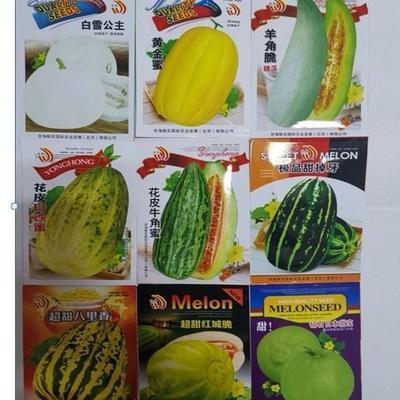 江苏省宿迁市宿城区羊角蜜甜瓜种子 常规种(原种) ≥85%