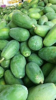 广西壮族自治区崇左市龙州县大白木瓜 1 - 1.5斤