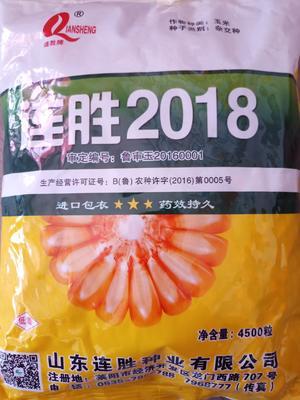 山东省聊城市茌平县连胜2018 常规种 ≥95%