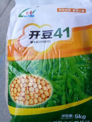 河南省郑州市金水区黄豆种子 原种 ≥98% ≥85% ≤13.5%