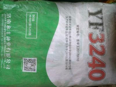 山东省济宁市嘉祥县永丰3240玉米种 常规种 ≥97%