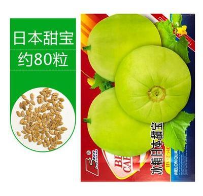 江苏省宿迁市沭阳县日本甜宝甜瓜种子 常规种(大田用种) ≥90%