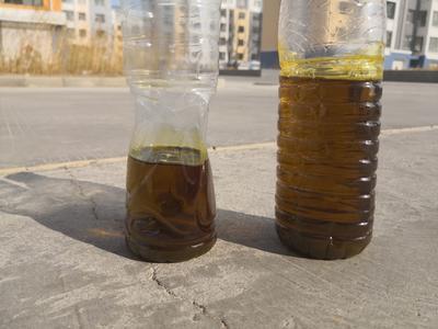 内蒙古自治区锡林郭勒盟东乌珠穆沁旗油菜籽