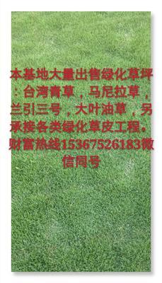 湖南省永州市东安县兰引三号