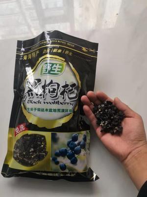 青海省海西蒙古族藏族自治州都兰县黑枸杞 特级