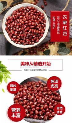 广东省潮州市湘桥区大红豆