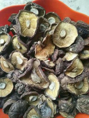 陕西省安康市平利县普通干香菇 散装 1年以上
