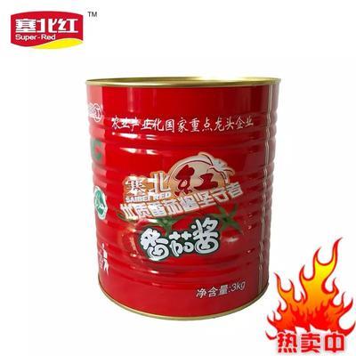 浙江省杭州市萧山区番茄酱 塞北红3kg