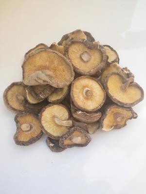 陕西省商洛市商南县香菇片 散装 1年以上