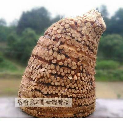 广西壮族自治区柳州市融水苗族自治县竹根