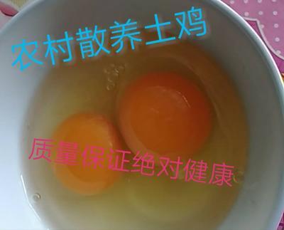 辽宁省葫芦岛市建昌县土鸡蛋 食用 散装