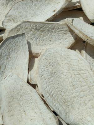 河南省南阳市西峡县红薯干  1年 散装 片状 削皮精品