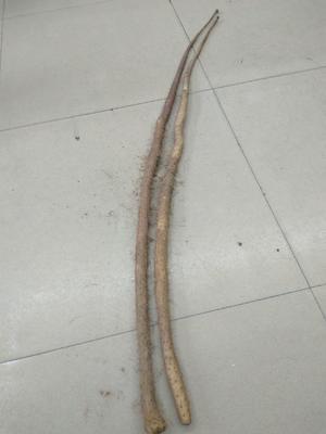 这是一张关于铁棍山药 70~90cm 的产品图片